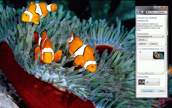 Clownfishes Crack & Activation Code