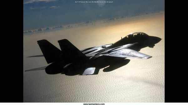 F-14 Tomcat Crack With Activation Code