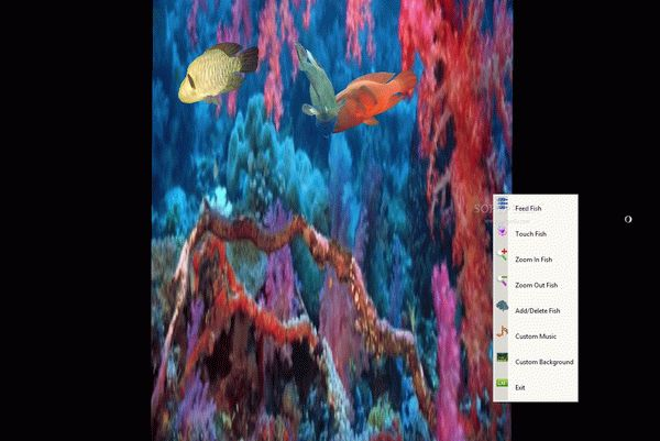Red Sea Napoleon Fish Screensaver Crack With Serial Key